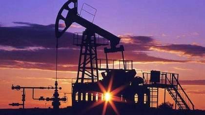 Замена российской нефти: Беларусь рассматривает Украину как возможного поставщика