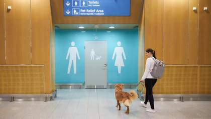 В аеропорту Гельсінкі з'явилися туалети для домашніх тварин: фото