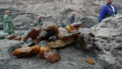 Рада снизила ренту на добычу янтаря