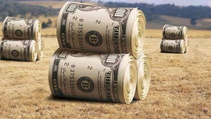 У ЄС дали поради, як правильно впровадити ринок землі в Україні