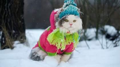 Прогноз погоды на 7 февраля: в Украине будет снежить и морозно