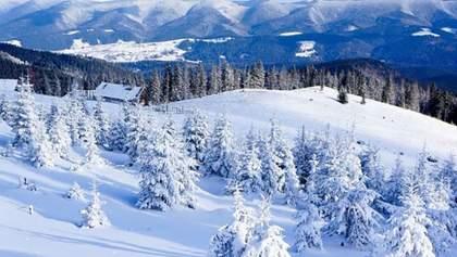 У Карпатах випало більше метра снігу: неймовірні фото