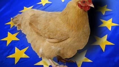 Евросоюз отменил запрет на импорт курятины из Украины: что об этом известно
