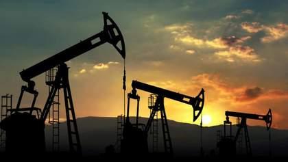"""Группа """"Приват"""" Коломойского и Боголюбова требует 25% пошлины на импорт российского топлива"""