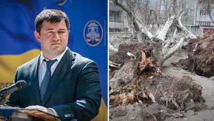 Головні новини 24 лютого: Насіров повертається, страшна негода накрила Україну