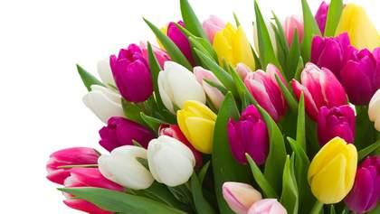 Вихідні дні у березні 2020: які святкові дні чекають українців