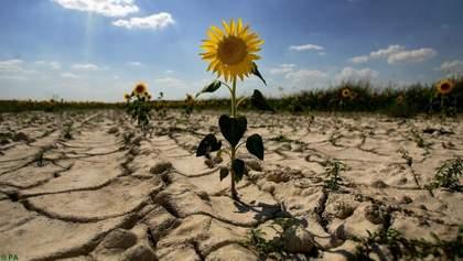 Из-за аномально теплой зимы украинцам могут ограничить использование воды: детали