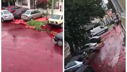 Реки крови залили жилой квартал в Аргентине: видео +18