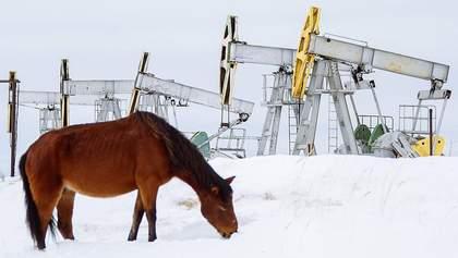 Цена российской нефти рекордно обвалилась: сколько денег потеряет Россия