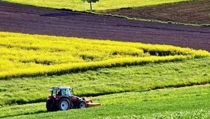 Открытие рынка земли: Всемирный банк призывает принять дополнительные законы
