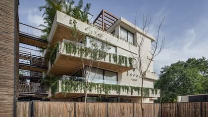 Джунглі в квартирі: дружні до екології апартаменти побудували в Мексиці – фото