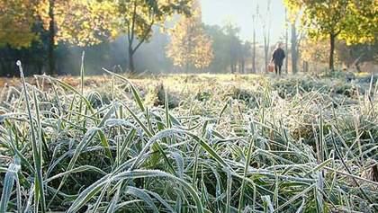 В Украину снова идут ночные заморозки: где и когда будет холоднее всего