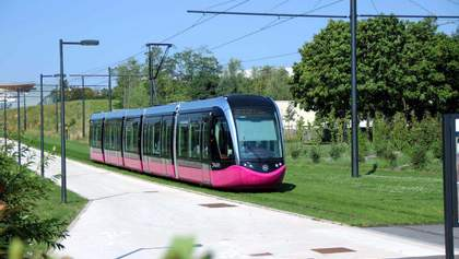 """""""Зеленые газоны"""" для трамваев: зачем это нужно?"""