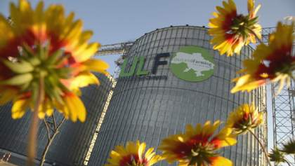 """В """"Укрлендфарминг"""" 60% посевных площадей в этом сезоне занимает кукуруза"""