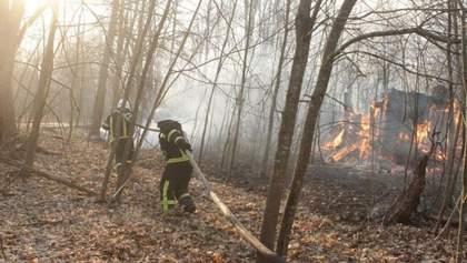 Уряд виділив гроші на гасіння масштабних пожеж у Чорнобильській зоні