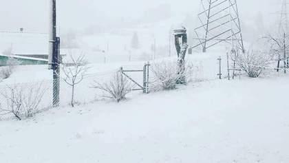 Украину посреди весны засыпало снегом: в Карпатах снегопад – фото, видео
