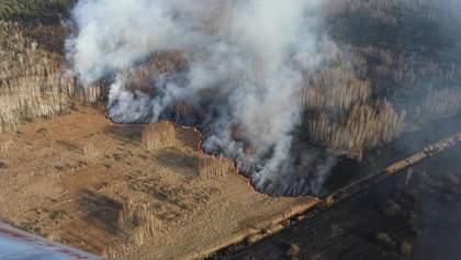 На пожежу в Чорнобилі вплинула і зміна клімату, – Державна екологічна інспекція