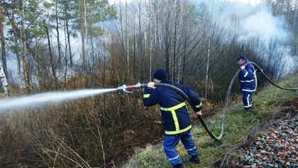 Пожары на Житомирщине: к разрушительным последствиям могут быть причастны копатели янтаря