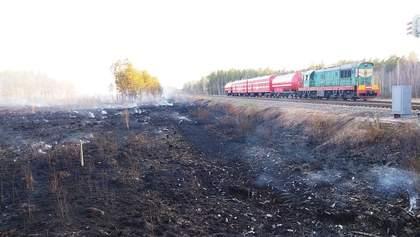 Найдем подонков: в МВД назвали версии пожаров на Житомирщине и в Чернобыле