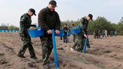 У постраждалих від Чорнобиля районах Білорусі вже можна жити, – Лукашенко