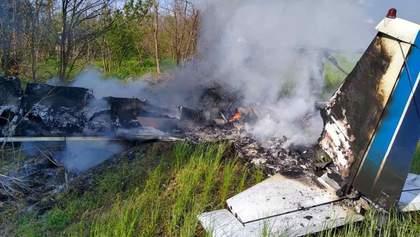Біля Дніпра розбився невеликий літак: відео смертельної трощі