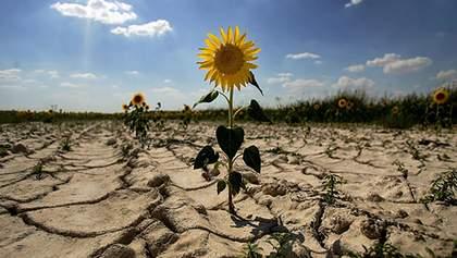 Урагани, посуха і різка зміна температур в Україні: невтішний прогноз кліматологів