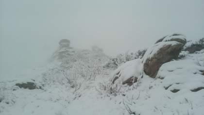 Зима у травні: в Карпатах випав сніг і лютують хуртовини – відео