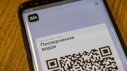 Дия работает уже три месяца: Федоров рассказал о проблемах сервиса