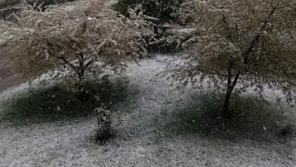 На Заході України випав сніг з дощем: фото і відео