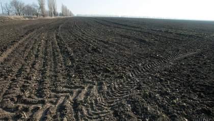 5 тисяч гривень за гектар: як Уряд планує рятувати аграріїв