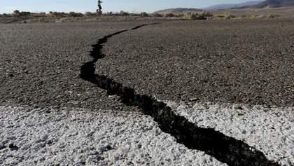 Земля здригнулась: сильний землетрус стався на заході США – відео