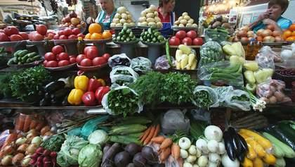 7 тисяч євро з гектара: скільки можна заробляти на овочах і фруктах