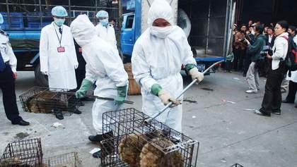 После атаки коронавируса в Ухане запретили торговать дикими животными