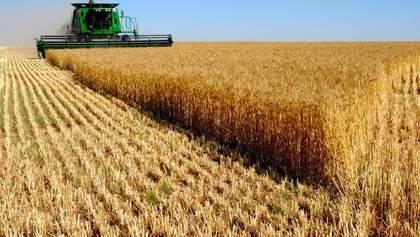 Яким буде урожай-2020: негативний і позитивний прогнози від Мінекономрозвитку
