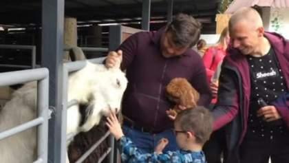 Может ответить за козла: против Богдана призывают открыть дело