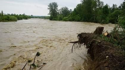 Непогода вернулась в Украину: на Львовщине затопило целые села – фото