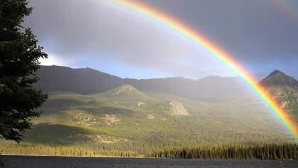 Прогноз погоды на 8 июля: на Западе будет солнечно, а Восток накроют грозы