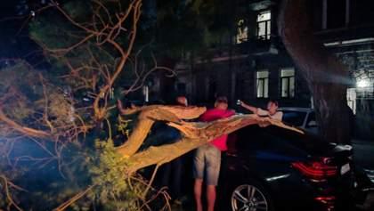 Повалені дерева і град: Одещиною пройшовся буревій, є постраждалі – фото, відео