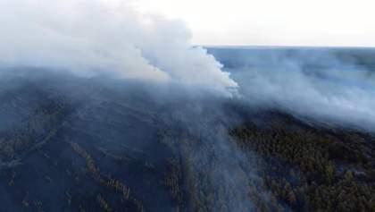 Печальные последствия пожаров на Луганщине показали с высоты птичьего полета: видео