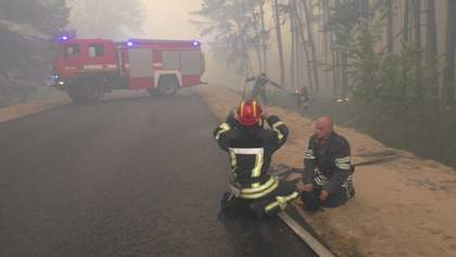 Лесной пожар на Луганщине локализовали