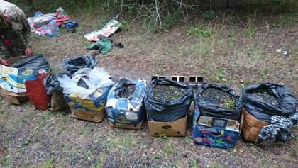 Радіоактивні гриби та чорниця: в Чорнобильській зоні знову спіймали порушників – фото