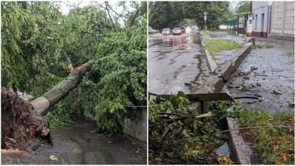 Повалені вітром дерева і затоплені вулиці: наслідки негоди на Хмельниччині у фото й відео