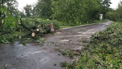 Западную Украину накрыла непогода: фото и видео