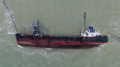 В Одесі біля танкера Delfi знайшли мертвого дельфіна: відео