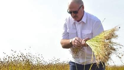 Навіщо нам чужі помилки: Лукашенко розкритикував відкриття ринку землі в Україні