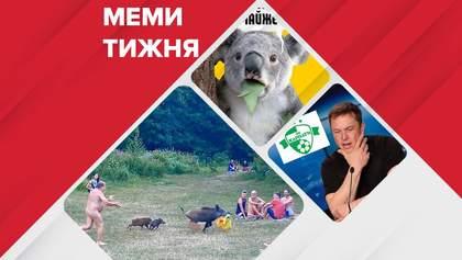 """Самые смешные мемы недели: новая эмблема """"Карпат"""", последний месяц лета и беспощадный 2020-й"""