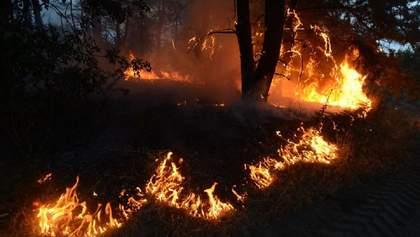 Постраждалим у пожежах на Луганщині виділили майже 2,3 мільйона гривень