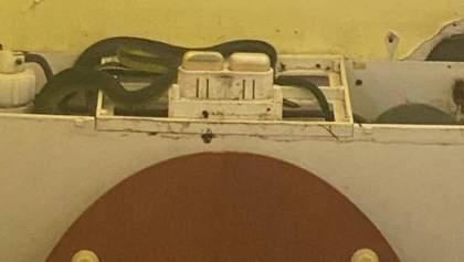 Сюрприз в туалете: в сливном бачке поселились четыре змеи и не давали слить воду