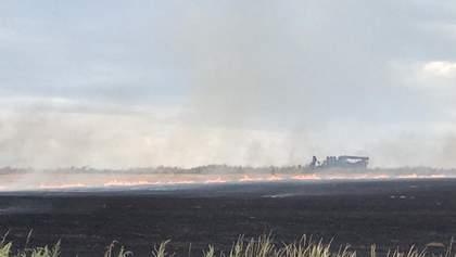 Пожежа біля Станиці Луганської: у штабі ООС назвали попередню причину