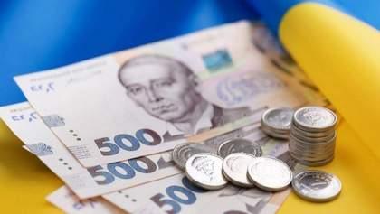 Миллиарды гривен: сколько денег приносят ФЛП в бюджет Украины
